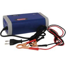 Зарядное инверторное устройство ИЗУ-6 Диолд